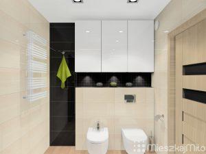 bidet i toaleta w łazience