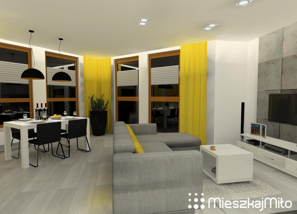 1 salon+kuchnia