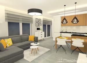 aranżacja salonu i kuchnia