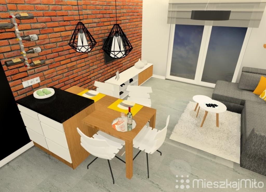 aranżacja kuchni otwartej na salon