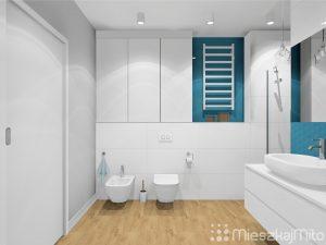 wc i bidet w łazience