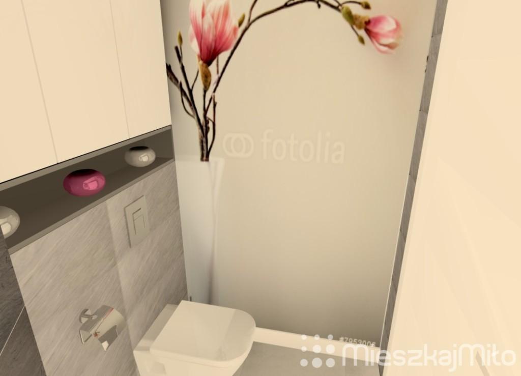 pomieszczenie wc